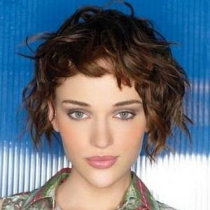Gracefull Lace Front Short Curly Brown Top Quality High Heated Fiber Hair Wig