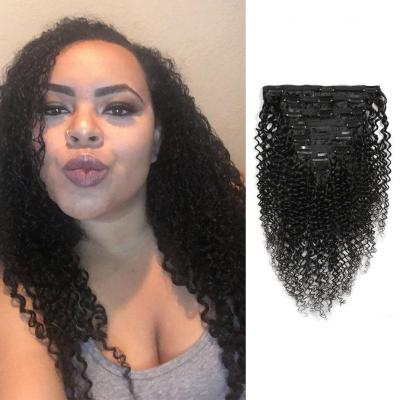 Kinky Curly Clip In Human Hair Extensions For Black Hair 120g