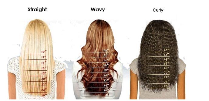 Hairplusbase Hair Length Chart