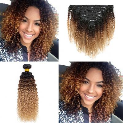 Ombre Afro Kinky Curly Clip In Human Hair Extensions #1B/#4/#27 120g